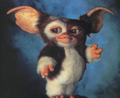 Picture of Mogwai from Gremlins